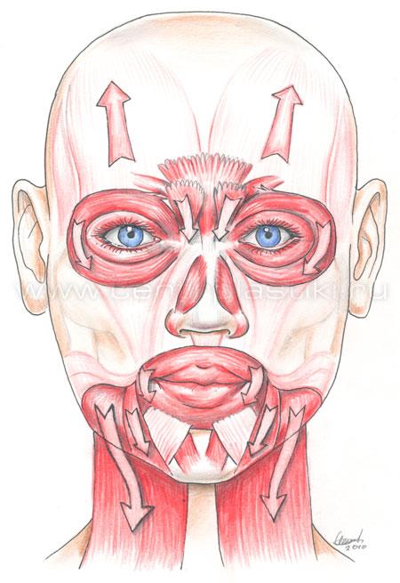 очистка лица у косметолога